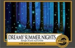 Dreamy Summer Night
