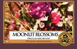 Moonlit Blossom